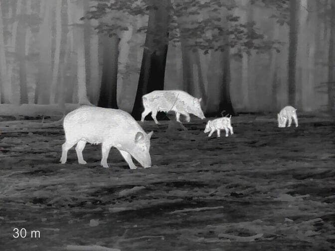 Thermal Imaging Systems in hunting